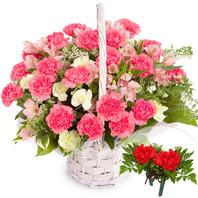 카네이션바구니+코사지2개(꽃행복338호)
